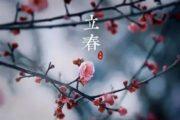 """农历戊戌狗年为""""单春年"""" 全年只有一个""""立春日"""""""
